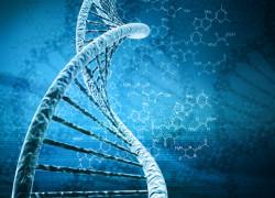 Blog-EFT-Science