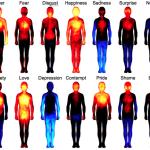 Recherche: les émotions ne sont pas que 'dans la tête', elles sont aussi dans le corps