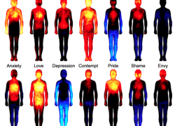 (English) Emotions_Body_Research
